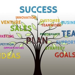 How Does Customer Success Work?